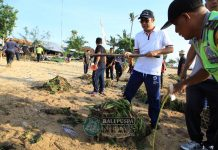 Ket foto : Wakil Walikota Denpasar, IGN Jaya Negara saat melaksanakan aksi bersih-bersih pntai di kawasan Pantai Semawang, Sanur, Denpasar, Jumat (16/11).