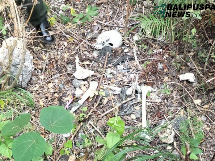 Penemuan kerangka manusia di Madas kawasan Banjar Dinas Giri, Desa Pecatu, Kuta Selatan, Kamis (4/7/2019)