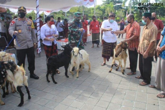 Penyerahan hewan kurban secara simbolis kepada perwakilan umat Muslim di Jembrana di areal Gedung Kesenian Bung Karno, Kamis (30/7)