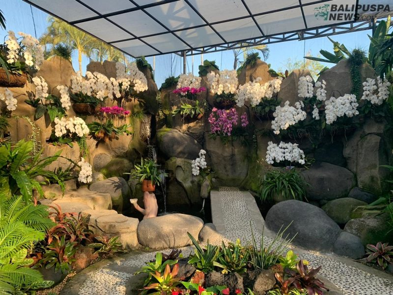 Salah satu koleksi anggrek di tempat wisata Duta Orchid Garden