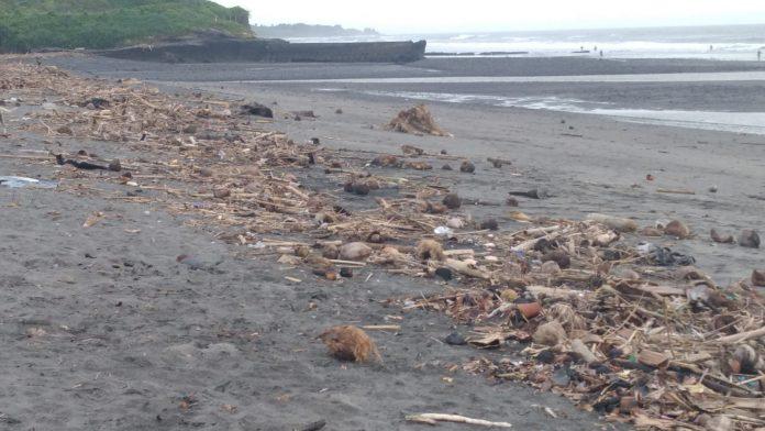 Sampah kiriman berupa potongan dahan kayu dan bambu yang mengotori Pantai Yeh Gangga